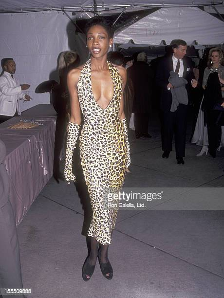 Model Roshumba attends the Vogue Magazine's 100th Anniversary Celebration on April 2 1992 at New York Public Library in New York City