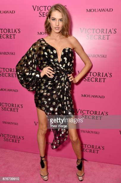 Model Sanne Vloet attends the 2017 Victoria's Secret Fashion Show In Shanghai After Party at MercedesBenz Arena on November 20 2017 in Shanghai China