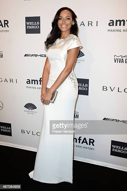 Model Selita Ebanks attends the 2014 amfAR New York Gala at Cipriani Wall Street on February 5 2014 in New York City