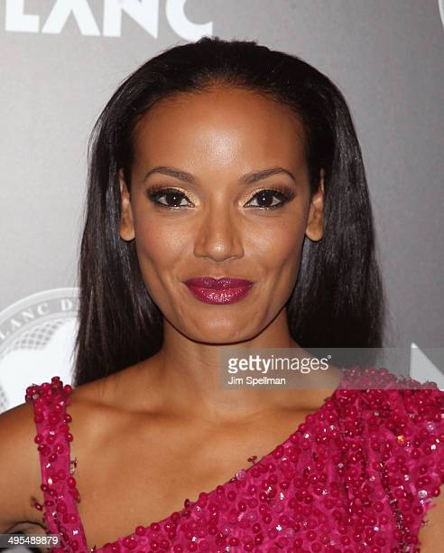 Model Selita Ebanks attends the 23rd Annual Montblanc De La Culture Arts Patronage Award Honoring Jane Rosenthal at Stephan Weiss Studio on June 3...