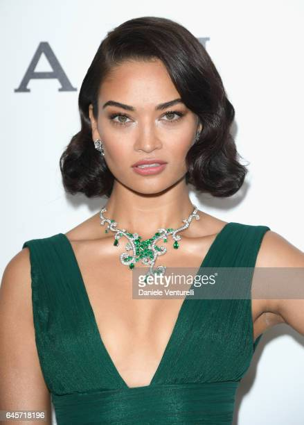 Model Shanina Shaik attends Bulgari at the 25th Annual Elton John AIDS Foundation's Academy Awards Viewing Party at on February 26 2017 in Los...