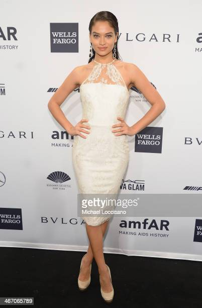 Model Shanina Shaik attends the 2014 amfAR New York Gala at Cipriani Wall Street on February 5 2014 in New York City