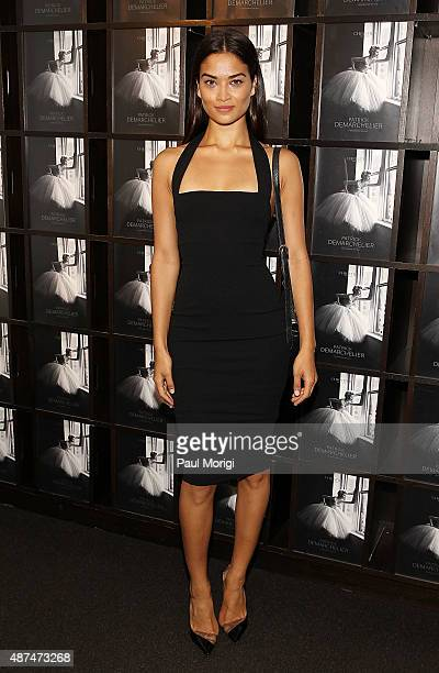 Model Shanina Shaik attends the 'Patrick Demarchelier' special exhibition preview to celebrate NYFW The Shows for Spring 2016 at Christie's on...