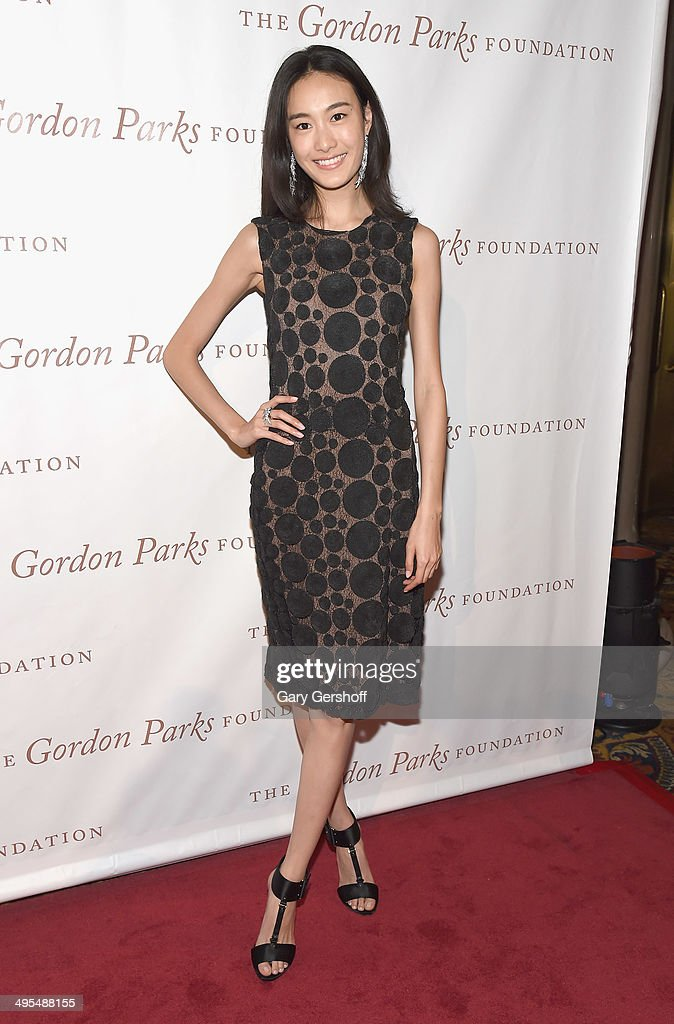 Model Shu Pei Qin attends the 2014 Gordan Parks Foundation Awards Dinner & Auction at Cipriani Wall Street on June 3, 2014 in New York City.