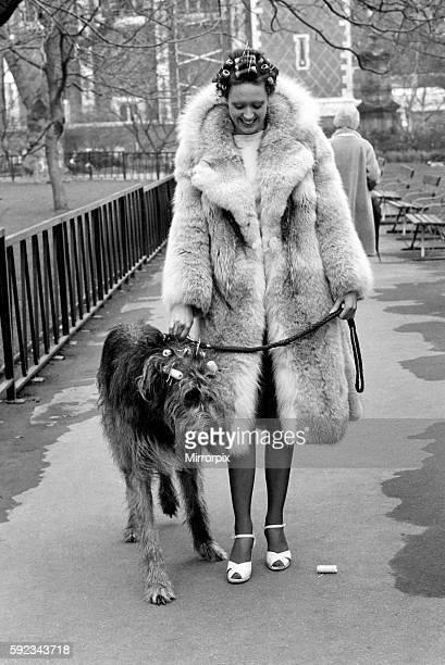 Model Victoria Burgyne and Irish Wolf Hound 'Jasper' February 1975 7500884007
