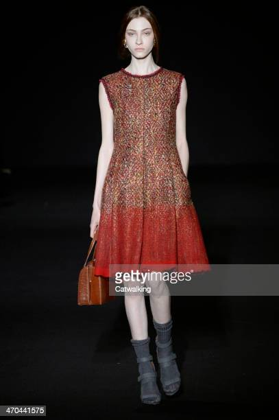 Model walks the runway at the Alberta Ferretti Autumn Winter 2014 fashion show during Milan Fashion Week on February 19, 2014 in Milan, Italy.