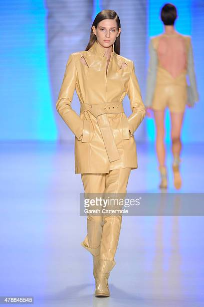 A model walks the runway at the Ayse Deniz Yegin show during MBFWI presented by American Express Fall/Winter 2014 on March 15 2014 in Istanbul Turkey