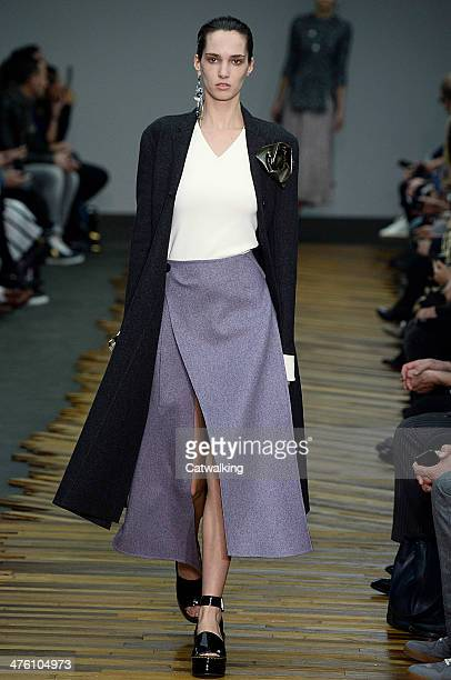 A model walks the runway at the Celine Autumn Winter 2014 fashion show during Paris Fashion Week on March 2 2014 in Paris France