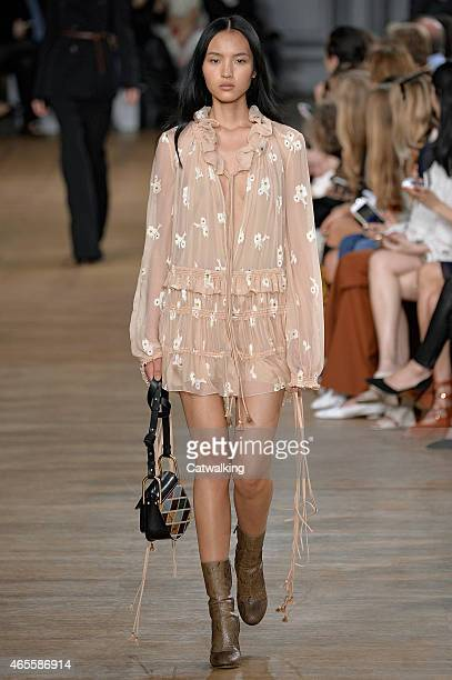 Model walks the runway at the Chloe Autumn Winter 2015 fashion show during Paris Fashion Week on March 8, 2015 in Paris, France.