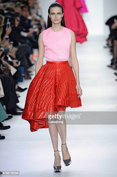 A model walks the runway at the Christian Dior Autumn Winter 2014 fashion show during Paris Fashion Week on February 28 2014 in Paris France