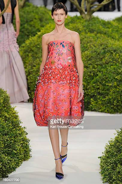 A model walks the runway at the Christian Dior Spring Summer 2013 fashion show during Paris Haute Couture Fashion Week on January 21 2013 in Paris...
