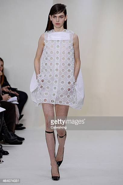 Model walks the runway at the Christian Dior Spring Summer 2014 fashion show during Paris Haute Couture Fashion Week on January 20, 2014 in Paris,...