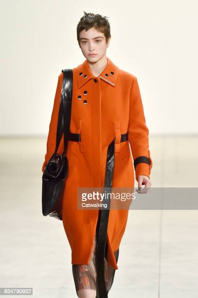 A model walks the runway at the Creatures of the Wind Autumn Winter 2017 fashion show during New York Fashion Week on February 11 2017 in New York...