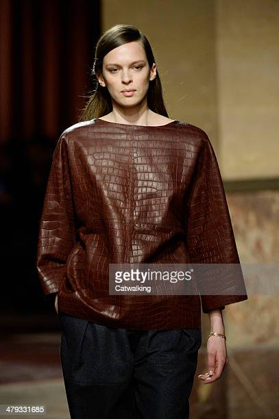 A model walks the runway at the Hermes Autumn Winter 2014 fashion show during Paris Fashion Week on March 5 2014 in Paris France
