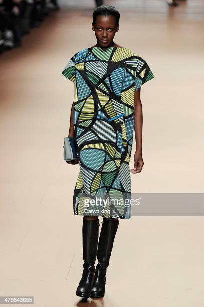 A model walks the runway at the Issey Miyake Autumn Winter 2014 fashion show during Paris Fashion Week on February 28 2014 in Paris France