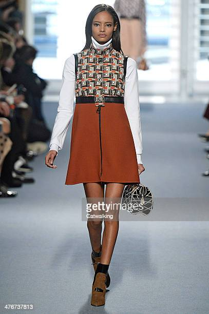 A model walks the runway at the Louis Vuitton Autumn Winter 2014 fashion show during Paris Fashion Week on March 5 2014 in Paris France