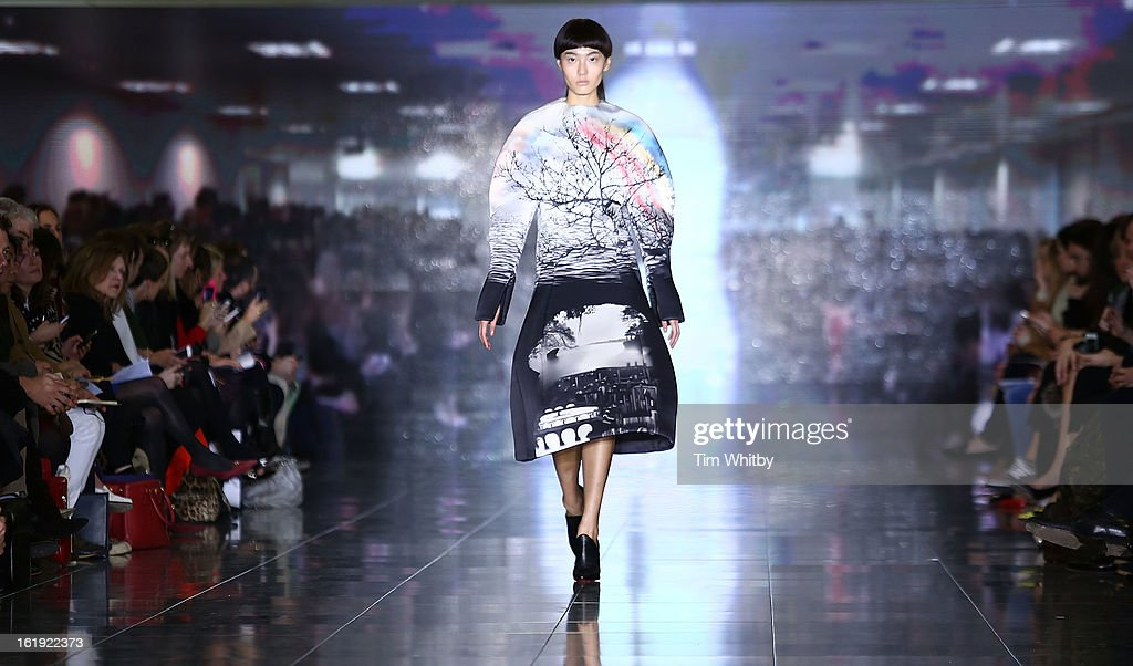 A model walks the runway at the Mary Katrantzou show during London Fashion Week Fall/Winter 2013/14 at Howich Place on February 17, 2013 in London, England.