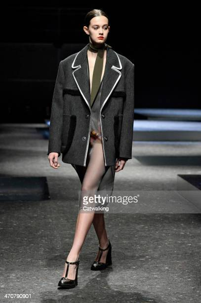A model walks the runway at the Prada Autumn Winter 2014 fashion show during Milan Fashion Week on February 20 2014 in Milan Italy