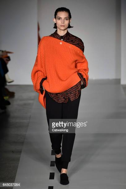 Model walks the runway at the Sportmax Autumn Winter 2017 fashion show during Milan Fashion Week on February 24, 2017 in Milan, Italy.