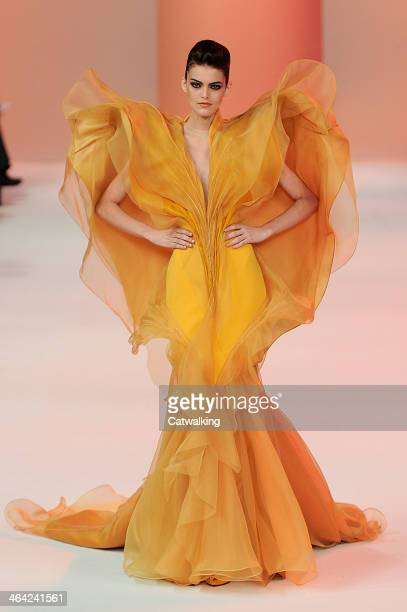 Model walks the runway at the Stephane Rolland Spring Summer 2014 fashion show during Paris Haute Couture Fashion Week on January 21, 2014 in Paris,...