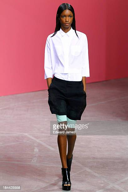 Model walks the runway at the Theyskens' Theory fashion show during Mercedes-Benz Fashion Week Spring 2014 on September 9, 2013 in New York City.