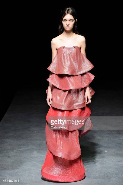 Model walks the runway at the Yiqing Yin Spring Summer 2014 fashion show during Paris Haute Couture Fashion Week on January 22, 2014 in Paris, France.