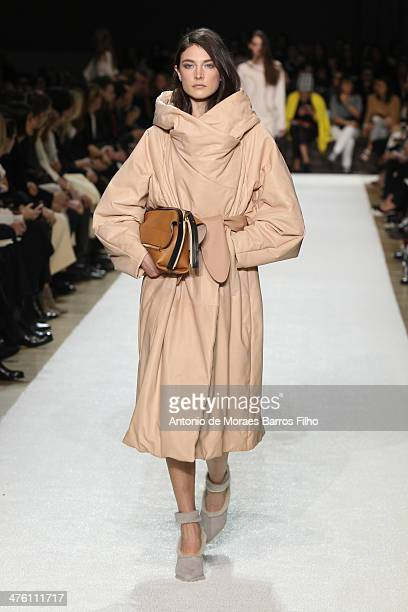 A model walks the runway during the Chloe show as part of the Paris Fashion Week Womenswear Fall/Winter 20142015 on March 2 2014 in Paris France