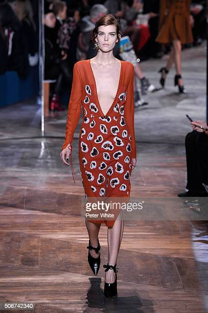 A model walks the runway during the Christian Dior Spring Summer 2016 show as part of Paris Fashion Week on January 25 2016 in Paris France