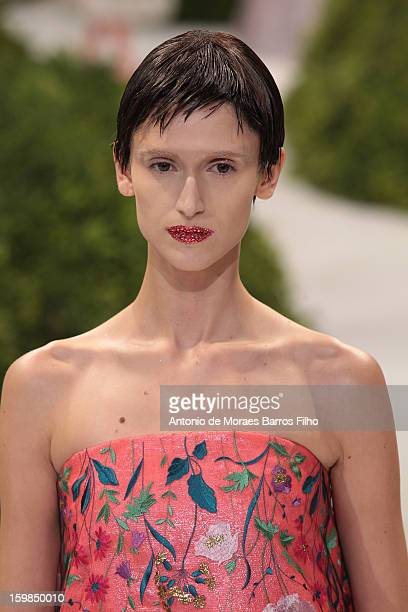 Model walks the runway during the Christian Dior Spring/Summer 2013 Haute-Couture show as part of Paris Fashion Week at on January 21, 2013 in Paris,...