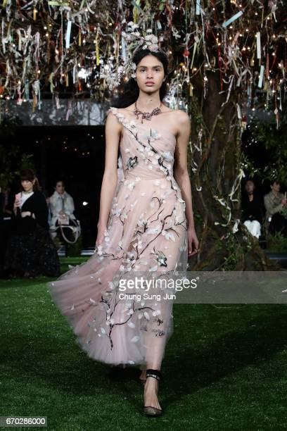 A model walks the runway during the Dior 2017 Spring/Summer Haute Coutour Collection Show at Ginza Six on April 19 2017 in Tokyo Japan