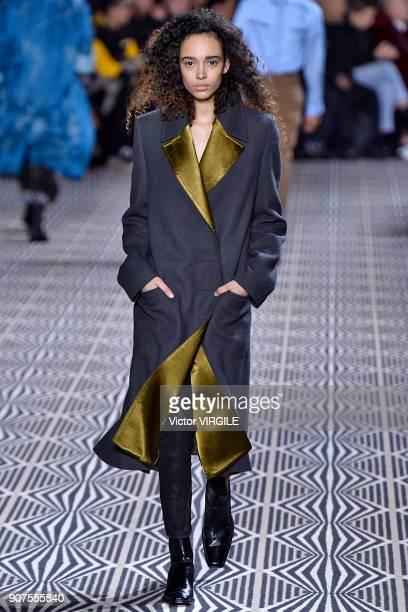 Model walks the runway during the Haider Ackermann Menswear Fall/Winter 2018-2019 show as part of Paris Fashion Week on January 17, 2018 in Paris,...