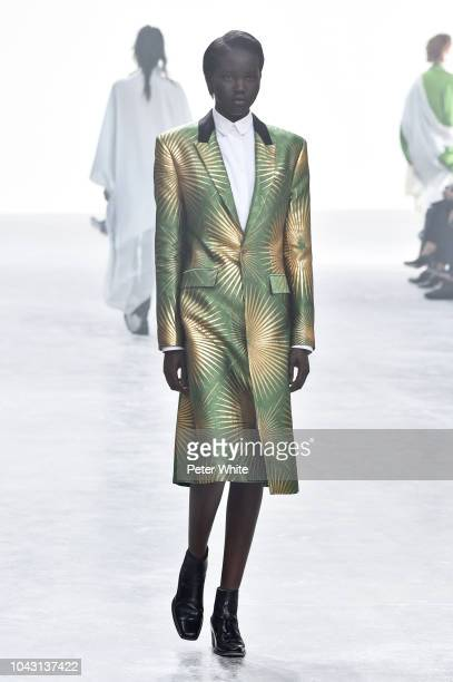 A model walks the runway during the Haider Ackermann show as part of the Paris Fashion Week Womenswear Spring/Summer 2019 on September 29 2018 in...