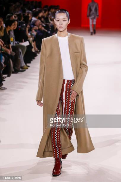 Model walks the runway during the Haider Ackermann show as part of the Paris Fashion Week Womenswear Fall/Winter 2019/2020 on March 02, 2019 in...