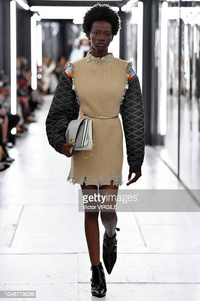 A model walks the runway during the Louis Vuitton Ready to Wear fashion show as part of the Paris Fashion Week Womenswear Spring/Summer 2019 on...