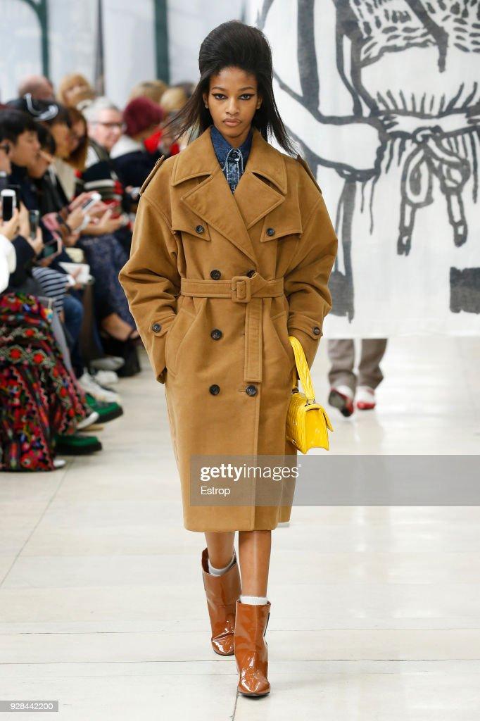 Miu Miu : Runway - Paris Fashion Week Womenswear Fall/Winter 2018/2019 : ニュース写真