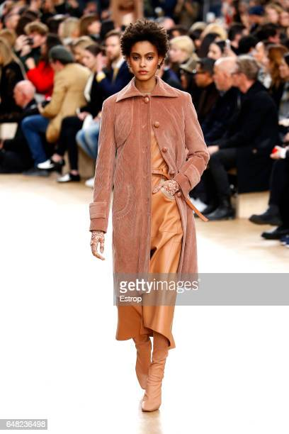 A model walks the runway during the Nina Ricci designed by Guillaume Henry show as part of the Paris Fashion Week Womenswear Fall/Winter 2017/2018 on...