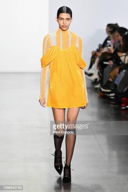 Model walks the runway for the Self-Portrait fashion show during New York Fashion Week: The Shows at Gallery I at Spring Studios on February 9, 2019...