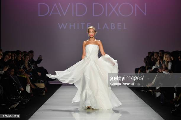 A model walks the runway wearing David Dixon fall 2014 collection during World MasterCard Fashion Week Fall 2014 at David Pecaut Square on March 18...