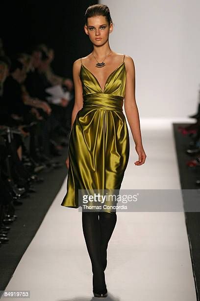 Model walks the runway wearing the Badgley Mischka Fall 2009 during Mercedes-Benz Fashion Week at The Tent in Bryant Park on February 17, 2009 in New...