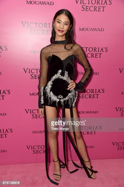 Model Wang Yi attends the 2017 Victoria's Secret Fashion Show In Shanghai After Party at MercedesBenz Arena on November 20 2017 in Shanghai China