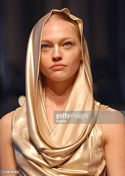 Model wearing Dior 2007 Cruise Collection during Dior 2007 Cruise Collection Show at LVMH in New York City New York United States