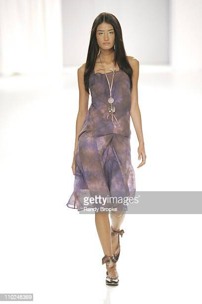 Model wearing Erika Ikezili during Sao Paulo Fashion Week Spring/Summer 2006 Erika Ikezili Runway at Museum of Art Moderne in Sao Paulo Brazil