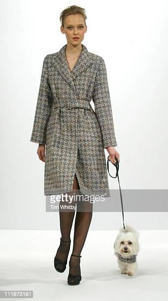 Model wearing Jean Muir during 2004 London Fashion Week - Autumn/Winter - Jean Muir - Runway at Jean Muir Offices, 22 Bruton Street in London, Great...
