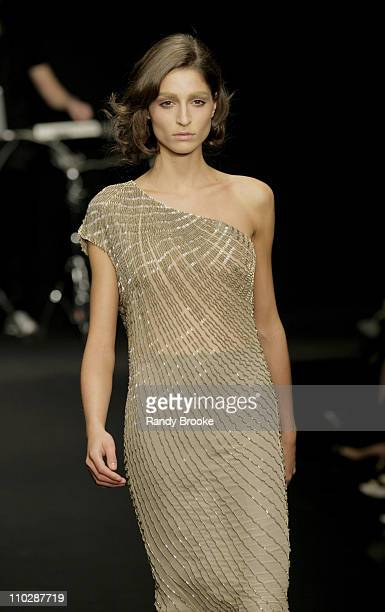 Model wearing Krizia Autumn/Winter 2006 during Milan Fashion Week Autumn/Winter 2006 - Krizia - Runway at Via Manin, 21 in Milan, Italy.
