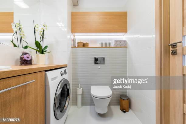 modern bathroom - toilet planter stock pictures, royalty-free photos & images