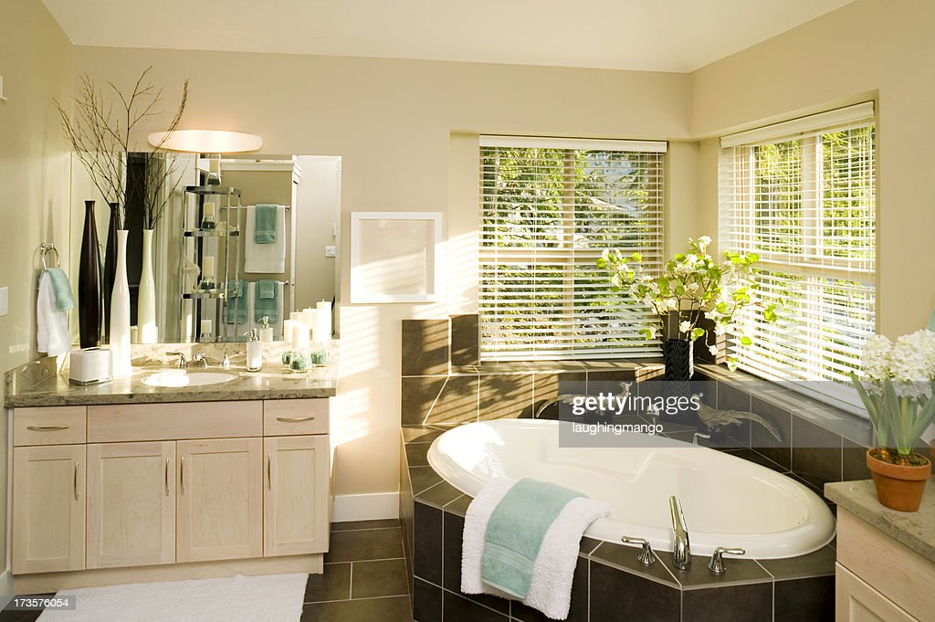 Vasca Da Bagno Ovale Incasso : Casa bagno per gli ospiti vasca da bagno a incasso foto stock