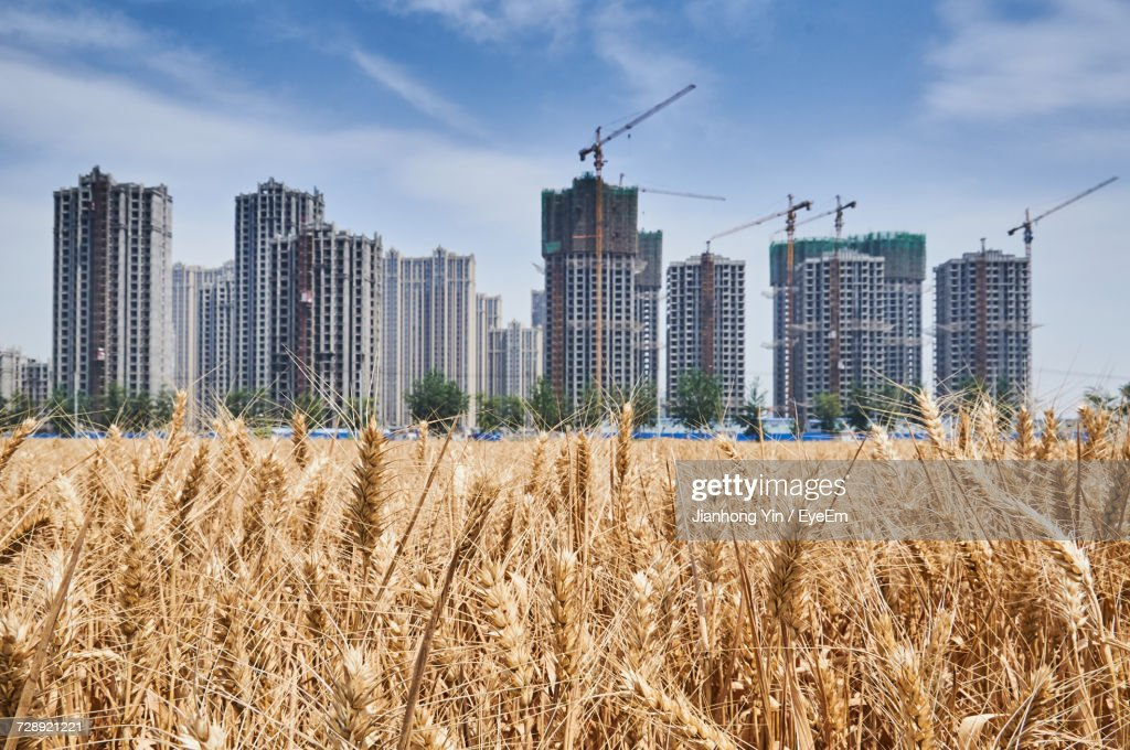 modern buildings in china stock photo getty images