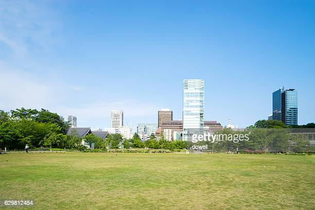 modern buildings near meadow in modern city - 公園 ストックフォトと画像
