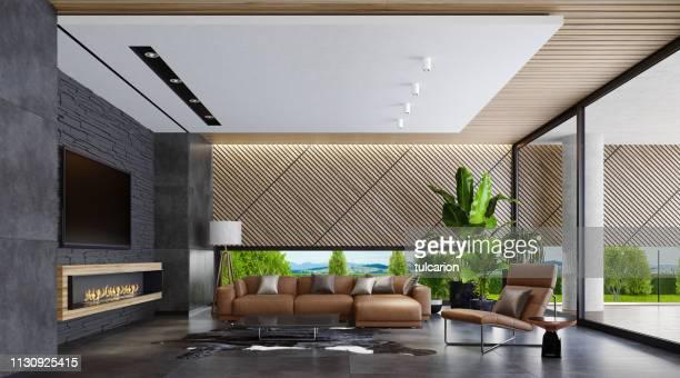 モダンカントリースタイルヴィラリビングルーム (エコ暖炉付) - クラシック ストックフォトと画像