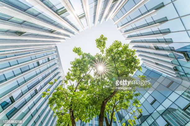 modern ecological city - environmental conservation stock pictures, royalty-free photos & images